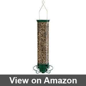 squirrel proof bird feeders amazon