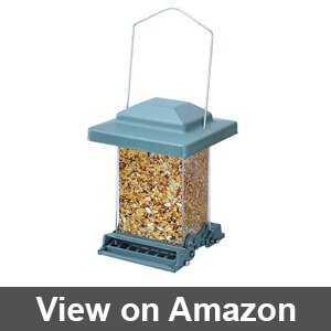 how to squirrel proof bird feeders
