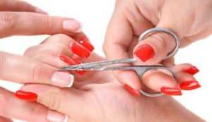 Best Cuticle Scissors