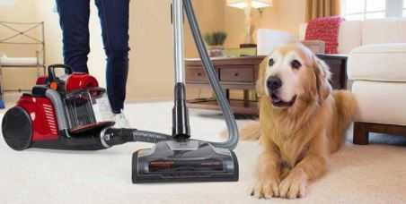 Best Hand Vacuum for Pet Hair Reviews in 2021