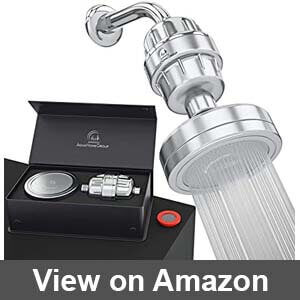 Best shower head filter for well water