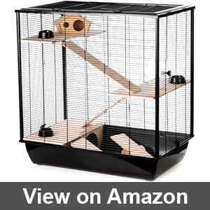 Best cages for rats