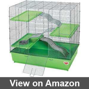 Best kaytee rat cage