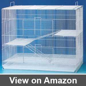 Best mouse cage