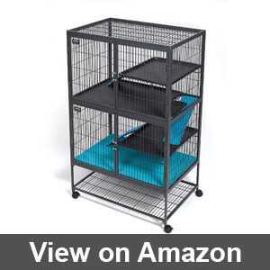 Best cheap rat cage