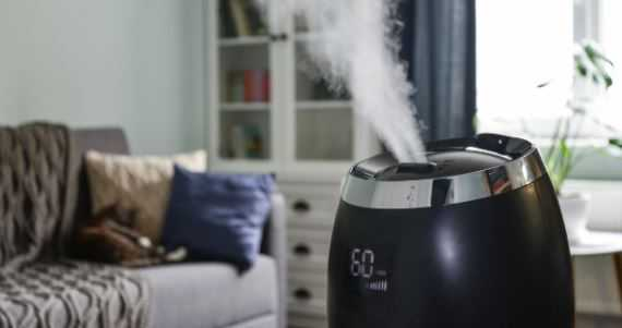 How to Choose the Best Humidifier for House in 2021
