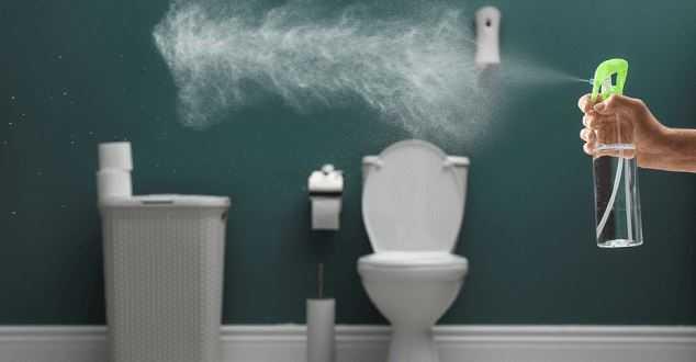 Best Air Freshener For Bathroom in 2021
