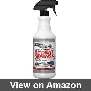 Best outdoor squirrel repellent