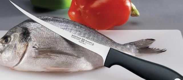 Best Fillet Knives for Cutting Fish in 2021